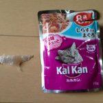 kalkan(カルカン)のキャットフードにプラスチック片の異物混入が見つかる