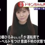 【訃報】声優・鶴ひろみさんのドキンちゃんは11月17日放送が最後に→普段埋まらないアンパンマン実況スレが消化される