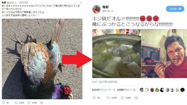 竜都さん@ryuto_o「俺にぶつかってきた鳥野郎を捌いてやった。キジ鍋だオルァ!!!!!!!!!!」→賞賛コメント殺到