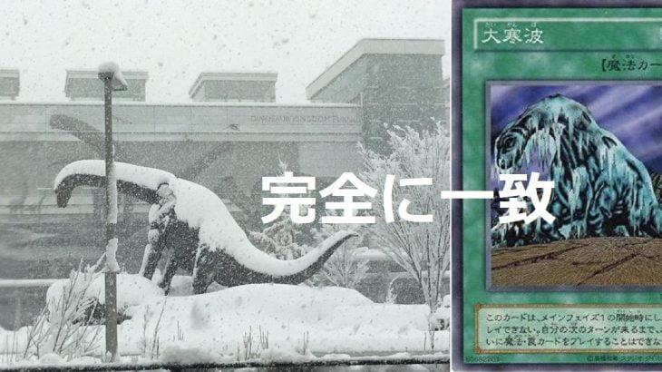 福井駅前の恐竜が雪で「大寒波」になってる