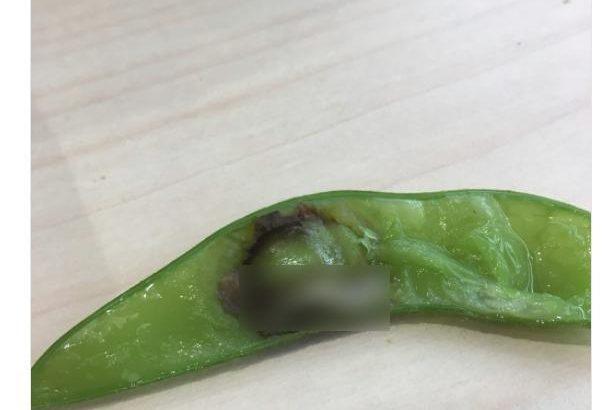 【閲覧注意】はま寿司の枝豆に異物混入!?とんでもないものが入っていた・・・