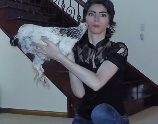 Nasim Aghdam(ナジム・アグダム)容疑者のチャンネルを特定 やはりユーチューバーだった【YouTube本社銃撃事件】