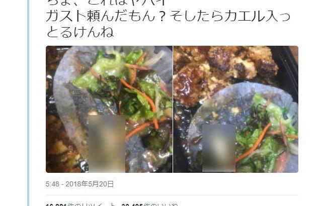 【画像】ガストのハンバーグ弁当にカエルが混入した件について、告発ツイッター「ニュースみたけど、色々話が違う点があるぞ?」