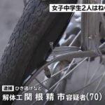 【関根精市】古河市ひき逃げ事故で男逮捕 現場は?