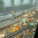 【京急事故】トラックが運んでいたのはみかんではなくオレンジ色になるレモンだった!?