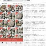 【花崗岩】コロナ対策に花こう岩⇒専門家「科学的根拠は全くない。デマ」