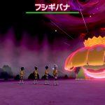 【ポケモン剣盾】野良レイドで色違い相次ぐ 1日で複数匹出現することも
