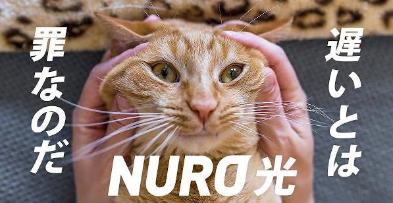 【悲報】NURO光を申し込み、1年超外工事が終了せず→キャンペーンの1年間980円も対象外、詐欺ではないかと怒りの告発