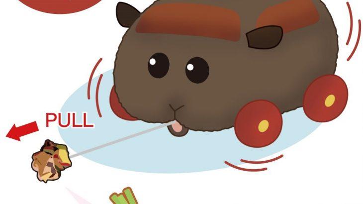 """【朗報】モルカーぬいのテディは""""ごみ""""で非難→""""ブーストにんじん""""が追加される「テディちゃん良かったね」"""